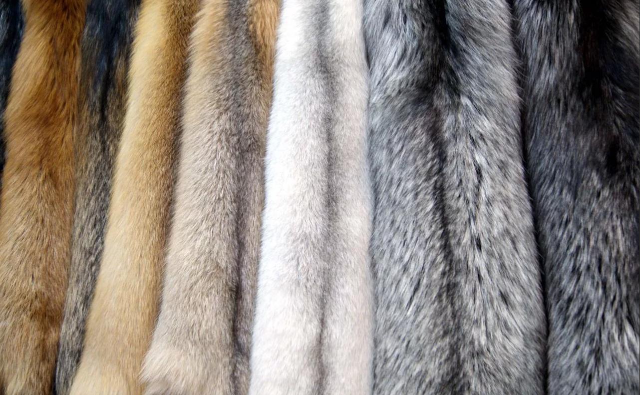 Шубы из какого меха считаются самыми тёплыми?
